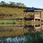 Ocean View Estates Vineyard